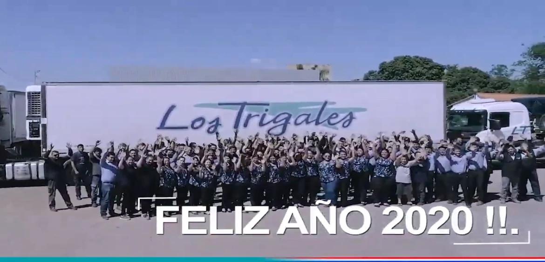 23 AÑOS DE LT.